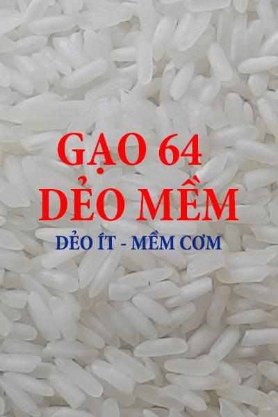 gao_64