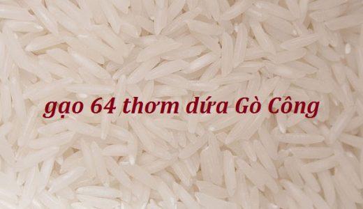 gao-64-thom-dua-go-cong-3