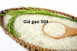 gao_504